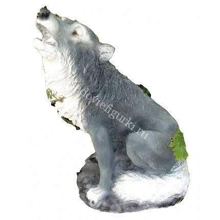 Волк сидит воет
