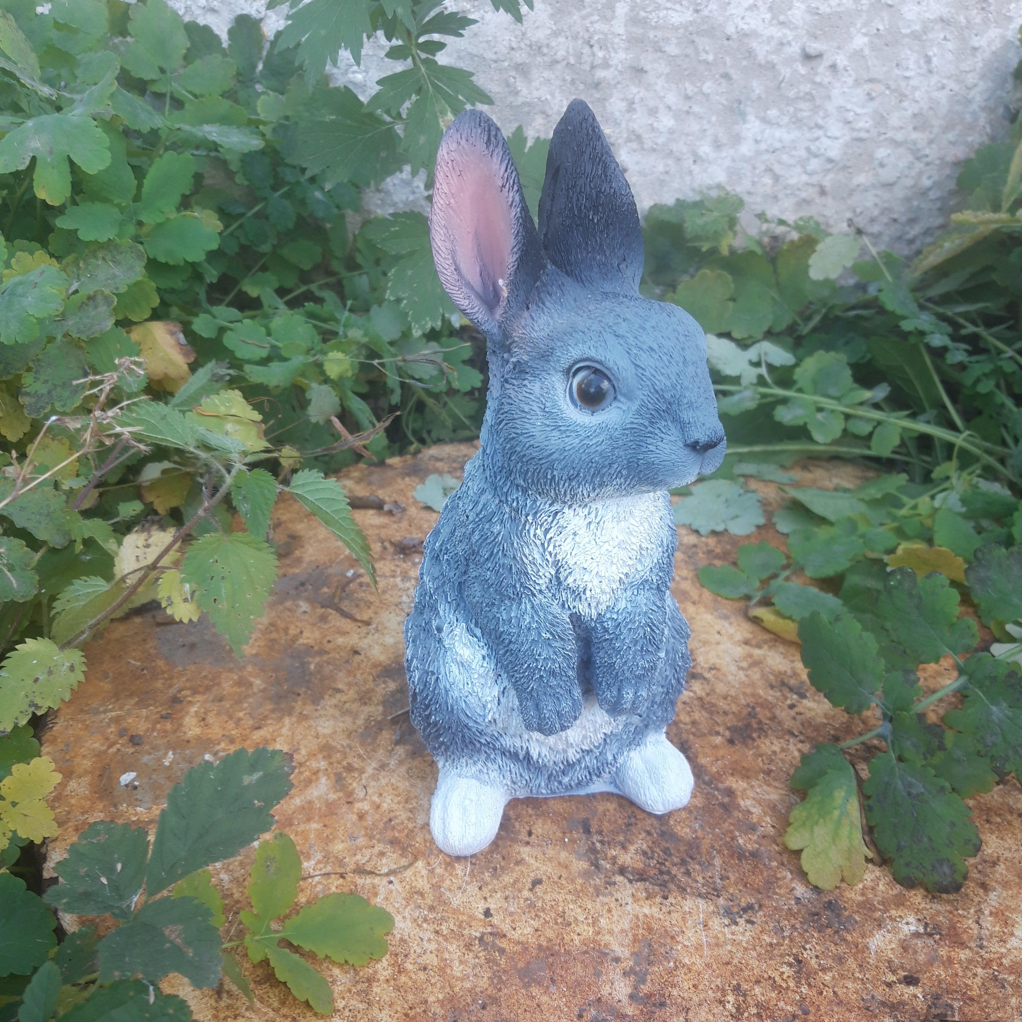 Заяц  полевой